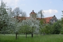 59_Obstbluete_Schloss_Brake_2016-05-12_13_06_40.jpg